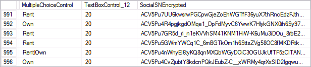 Encrypted Database Screenshot